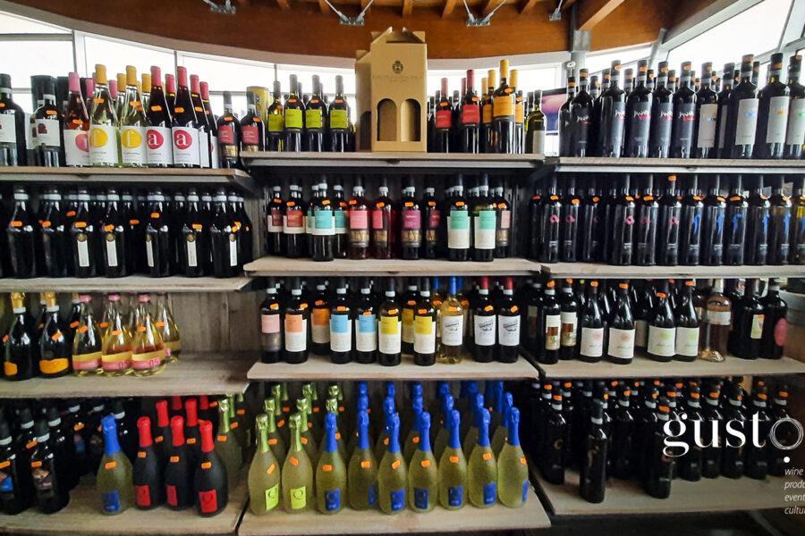 Un percorso nei vini del Sannio